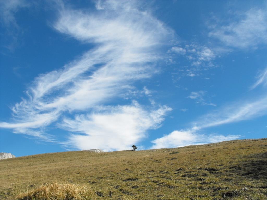 Les Chalets Nature Vercors - But de l'Aiglette
