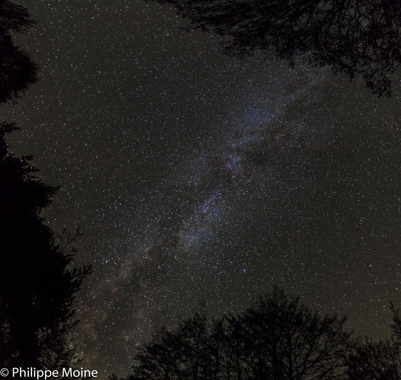 Voie Lactée aux Chalets Nature Vercors
