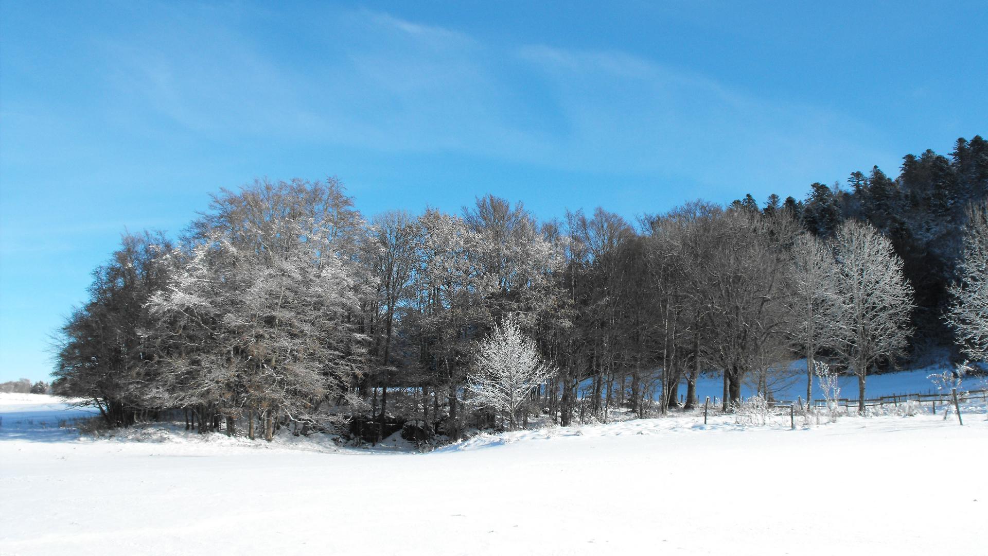 Les Chalets Nature Vercors - Location de chalets au coeur du parc naturel régional du Vercors - Foire aux Questions